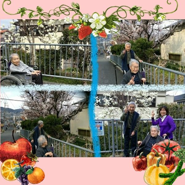 2017-04-01_00-53-11_918.jpg