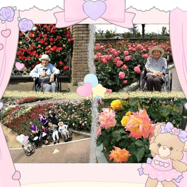 2017-05-20_19-56-10_949.jpg