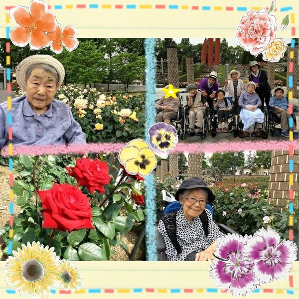 2017-05-20_20-07-04_538.jpg