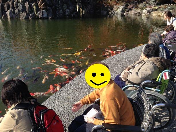 鯉.jpg