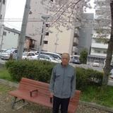 4gatu-ohanami1.jpg