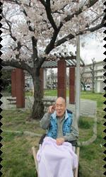 桜10.png