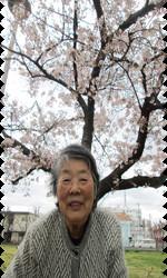 桜9.png