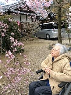 桜幸子.JPG