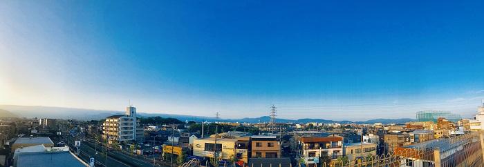 桜 屋上11.JPG