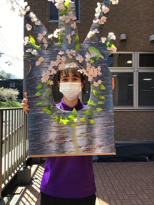 桜の妖精 (7).JPG