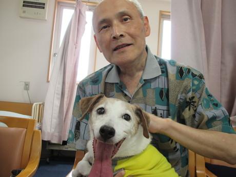 犬①のサムネイル画像